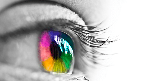 Color perception and why we disagree about the color of things